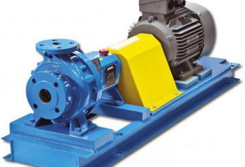 Jednostopniowa pompa odśrodkowa do wody: schemat. Wspornikowe jednostopniowe pompy odśrodkowe. Pionowe jednostopniowe pompy odśrodkowe