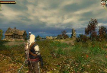 """¿Dónde puedo conseguir en el juego """"The Witcher"""" Swords: una guía"""
