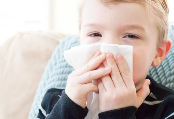 Was ist, wenn das Kind eine laufende Nase hat? Die Behandlung der Volksmedizin – das ist ein guter Weg!