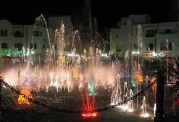 La Perla d'Africa. Quale posto migliore per andare per una vacanza in Tunisia?