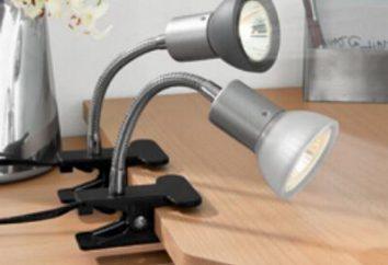 Lampe de table dans la pince: les règles de sélection. Ce qui devrait être une lampe de lecture pour les étudiants