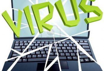 A infecção por vírus de computador podem ocorrer no processo de trabalhar com arquivos?