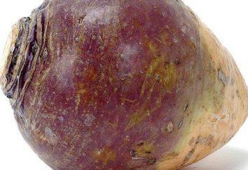 Il rutabaga è una verdura sana e deliziosa. Caratteristiche, uso nella cottura