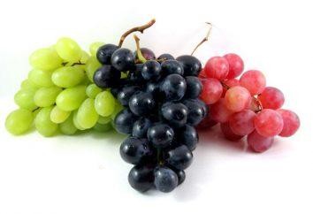 Grape tick – Kontrollmethoden. Mite fühlte Traube, Zecke