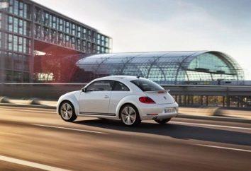 """Volkswagen Beetle"": una revisione del modello"