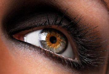 Angiopathie der Netzhaut beider Augen – was ist das und wie sie zu behandeln?