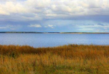 Einzigartige See Region Kurgan. Bärische: Beschreibung, Merkmale, Fotos