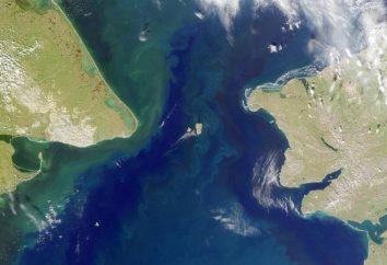 Bering Strait corredor para o Novo Mundo