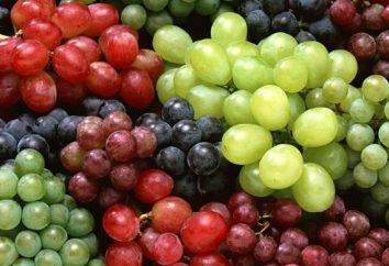 Interprétation des rêves: les raisins sont une transcription d'un rêve.