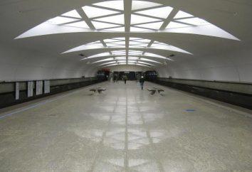 Linia Filowskaja z moskiewskiego metra