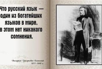 Oświadczenie o języku rosyjskim rosyjskich pisarzy. Krótkie sprawozdanie o języku rosyjskim