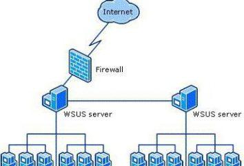 Windows Server Update Services (WSUS): configuração. WSUS offline Atualização