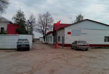 Dispensario farmaci (Samara): ramo, tipi di assistenza