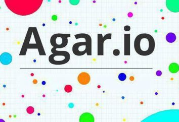 """Come in """"Agar"""" creare il proprio server? Un modo semplice per"""