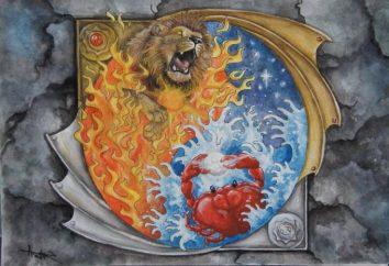 Lwy i Raki: Kompatybilność jest to możliwe, czy nie?