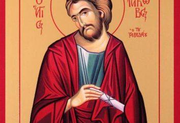 L'Apostolo Iakov Alfeev: la vita di preghiera e di un'icona