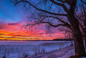 Descrizione della natura invernale. Natura in inverno