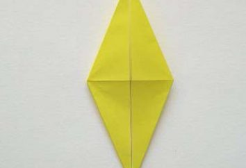 """La forma di base di origami, """"triangolo"""", """"piazza"""" e """"rana"""""""