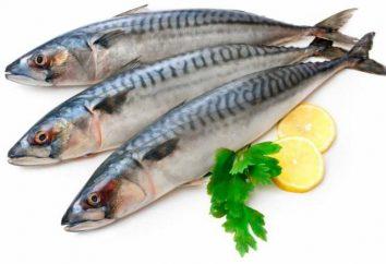 Ricetta per lo sgombro nel riempimento di senape: selezione utente di pesci e decapaggio