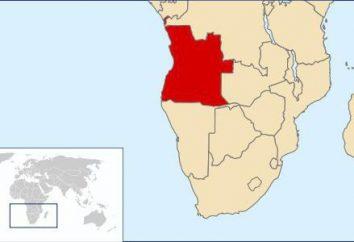 A guerra em Angola: os anos, o curso dos acontecimentos e os resultados de conflito armado