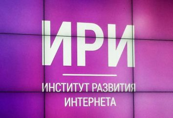 Instytut Rozwoju Internetu (IRI): historia, cele, projekty