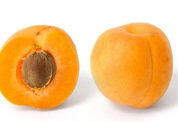 Quels aliments contiennent de la vitamine B17? Vitamine B17: commentaires oncologues