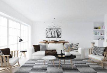 Interno dell 'appartamento in stile scandinavo: design e funzionalità