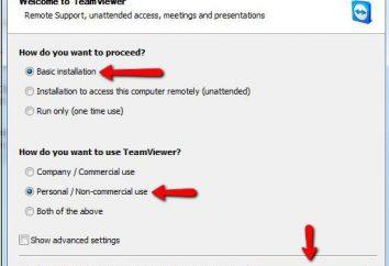 TeamViewer. Como usar?