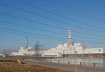 Smolensk NPP – la sicurezza energetica guardia