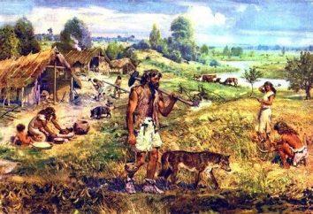 Dans ce qui semblait l'agriculture du millénaire? Quels sont les domaines du monde ont été les premiers à cultiver la terre?