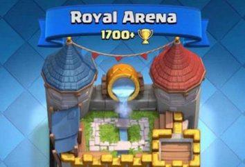 Ponte 5 dell'arena Clash Royale. suggerimenti sul gioco