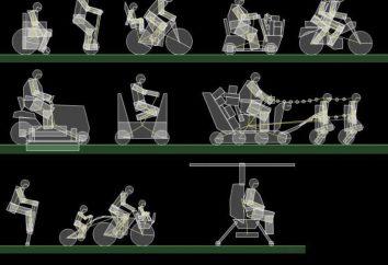 Gioco Happy Wheels: come rendere l'intero schermo