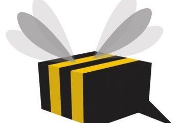 Jak wyłączyć wszystkie usługi Beeline: kilka sposobów