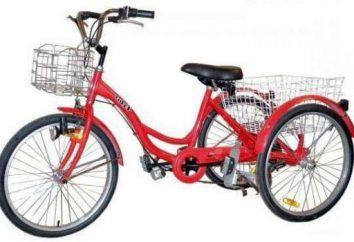 Bicicleta para as crianças com paralisia cerebral: características, tipos, características
