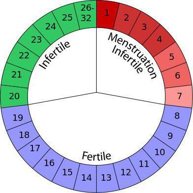 Metodo Del Calendario.I Piu Sicuri Giorni Di Gravidanza Come Calcolare Il Metodo Del