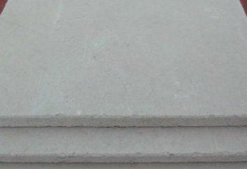 plaque Gipsostruzhechnaya – caractéristiques, la portée
