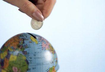 Gdzie inwestować milion: opcje