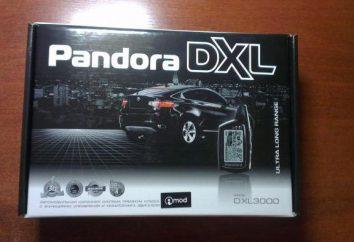 Car Alarm Pandora DXL 3000: Beschreibung, Anweisungen, Bewertungen