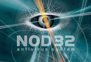 Comment mettre à jour anti-virus NOD32: méthodes de base