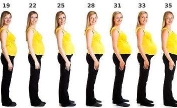 Primo trimestre – è quante settimane? Nutrizione nel primo trimestre