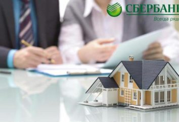 Wie die Rate für die Hypothek in der Sparkasse zu reduzieren? Bedingungen für den Erhalt einer Hypothek in der Sparkasse