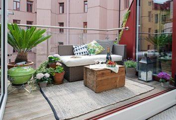 Come organizzare le piante d'appartamento al suo interno dell 'appartamento