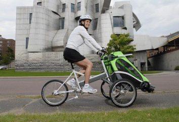 """Poussettes """"Kids Leader"""" – le style, le confort et la mobilité"""