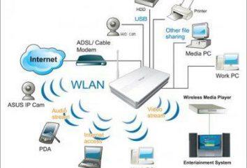 Router WiFi – jak wybrać urządzenie?