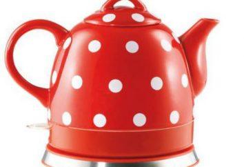Bester Keramik Wasserkocher: Bewertungen, Beschreibungen, Hersteller und Bewertungen