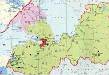 région de Leningrad Minerals: activement exploitée et prospective