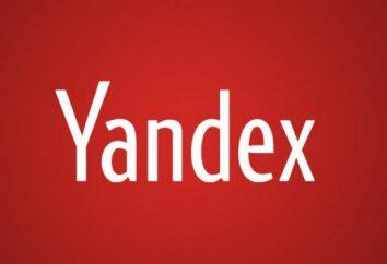 """Wie in """"Yandex Browser"""" Dateierweiterungen hinzufügen? Was Add-ons einen Web-Browser zu wählen?"""