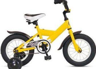 Erfahren Sie, wie ein Fahrrad für ein Kind wählen
