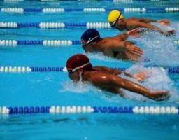 Décharge de la natation dans le système FINA