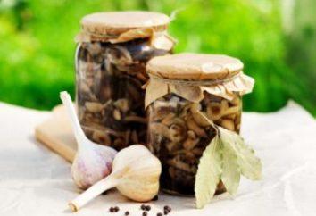 cogumelos salgados: a receita para o inverno